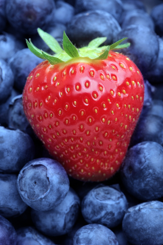 Berries Delay Brain Ageing