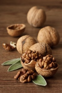 Nuts Contribute to Health of Brain And Body